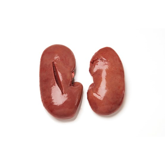Pork Kidney frozen